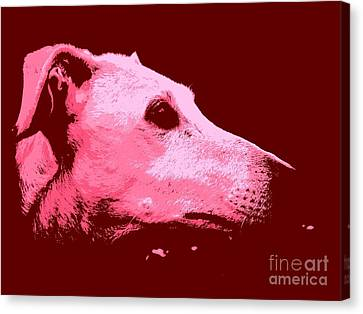 Greyhound Profile Canvas Print by Clare Bevan