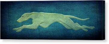 Evansville Canvas Print - Greyhound by Sandy Keeton