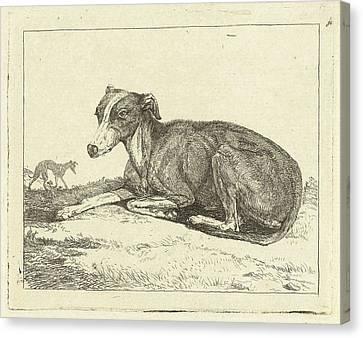 Greyhound Canvas Print - Greyhounds, Jan Dasveldt by Artokoloro
