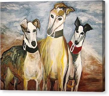 Greyhounds Canvas Print by Leslie Manley