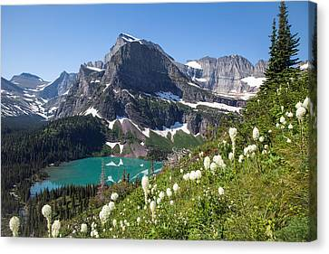 Grinnell Lake With Beargrass Canvas Print by Jack Bell