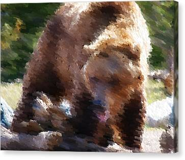 Grizz Canvas Print by Kevin Bone