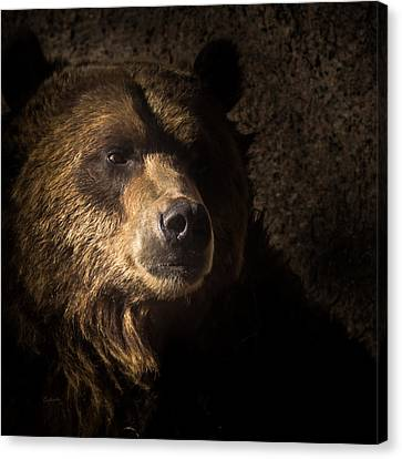 Grizzly 2 Canvas Print