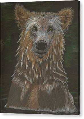 Grizzly Bath Canvas Print