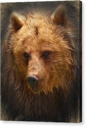 Grizzly Bear Canvas Print by Ian Merton
