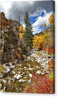 Canvas Print featuring the photograph Grizzly Creek Cottonwoods Vertical by Jeremy Rhoades