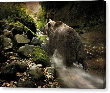 Grizzly Creek Canvas Print by Roy  McPeak