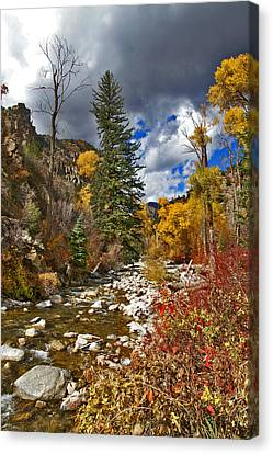 Canvas Print featuring the photograph Grizzly Creek Vertical by Jeremy Rhoades