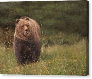 Grizzly Canvas Print by David Stribbling