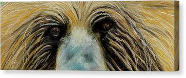 Grizzly Eyes Canvas Print by Jeanne Fischer