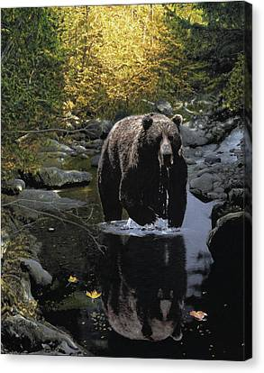 Grizzly Reflection Canvas Print by Brent Ander