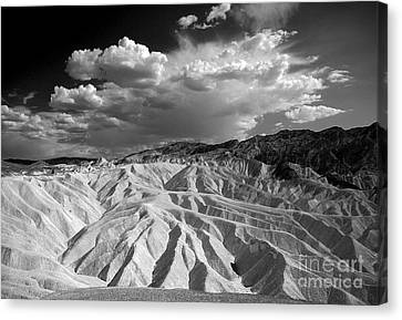 Grooving In Death Valley Canvas Print by Stephen Flint
