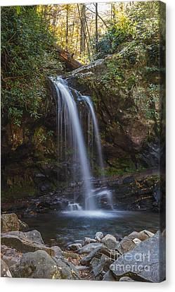 Grotto Falls I Canvas Print