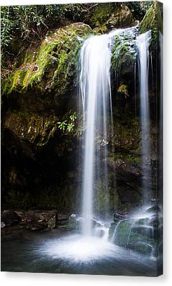 Canvas Print featuring the photograph Grotto Falls by Jay Stockhaus