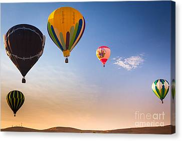 Group Of Balloons Canvas Print by Inge Johnsson