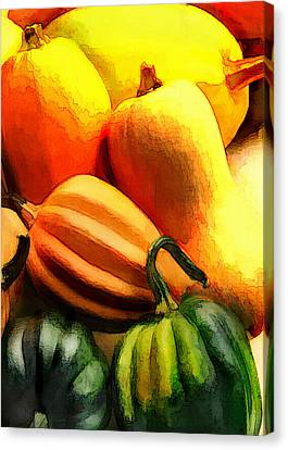 Group Of Gourds Canvas Print by Elaine Plesser