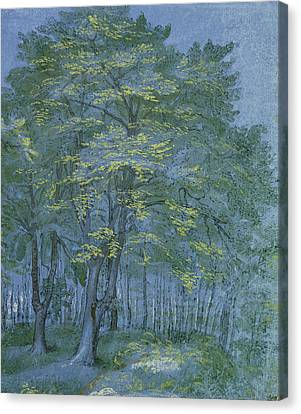 Group Of Trees In A Wood Canvas Print by Hendrik Goltzius