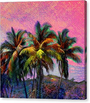 Grove Of Coconut Trees - Square Canvas Print by Lyn Voytershark