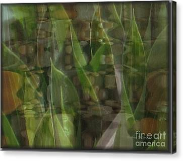 Canvas Print featuring the photograph Growing Season by Kathie Chicoine
