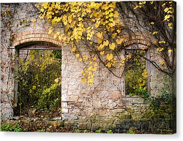 Canvas Print featuring the photograph Growth Industry by Mark David Zahn