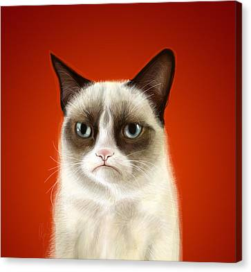 Grumpy Cat Canvas Print by Olga Shvartsur