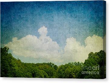 Grunge Background With Landscape Canvas Print by Mythja  Photography