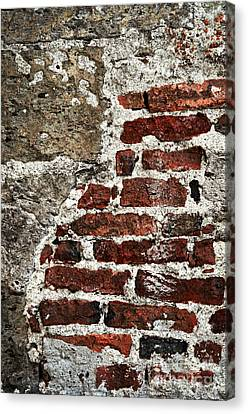 Grunge Brick Wall Canvas Print by Elena Elisseeva