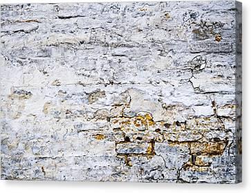 Grunge Wall Canvas Print by Elena Elisseeva