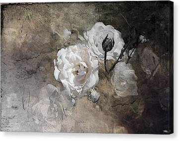Grunge White Rose Canvas Print by Evie Carrier