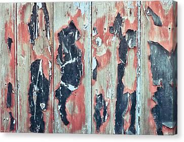 Grungy Wood Canvas Print by Tom Gowanlock