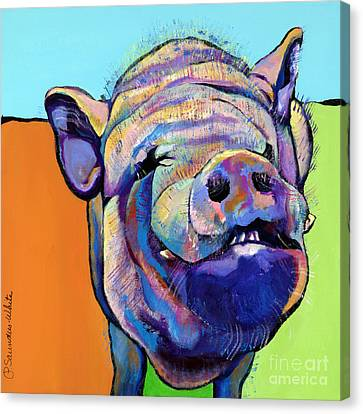 Farm Animal Canvas Print - Grunt    by Pat Saunders-White