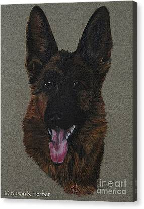 GSD Canvas Print by Susan Herber