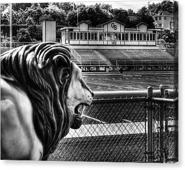 Gshs Lion Canvas Print by Coby Cooper