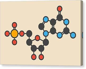 Guanylic Acid Molecule Canvas Print by Molekuul