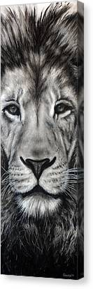 Close Up Canvas Print - Guardian by Courtney Kenny Porto