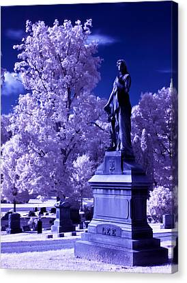 Canvas Print featuring the photograph Guardian by David Stine