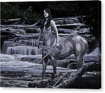 Sean Horse Canvas Print - Guardian II by Sean Holmquist