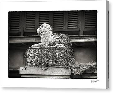 Guardian In Black And White Canvas Print by Brenda Bryant