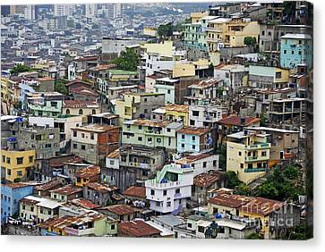 Guayaquil Canvas Print by Sami Sarkis