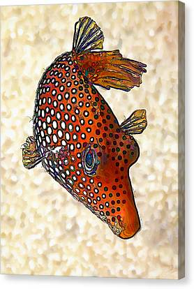 Meleagris Canvas Print - Guinea Fowl Puffer Fish by ABeautifulSky Photography by Bill Caldwell
