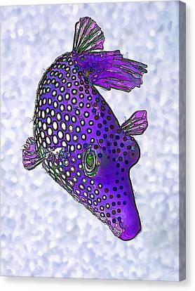 Meleagris Canvas Print - Guinea Fowl Puffer Fish In Purple by ABeautifulSky Photography by Bill Caldwell