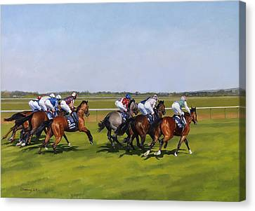 Guineas Canvas Print by Emma Kennaway