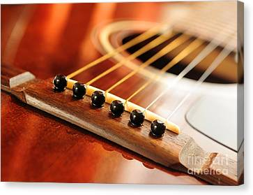 Guitar Bridge Canvas Print by Elena Elisseeva