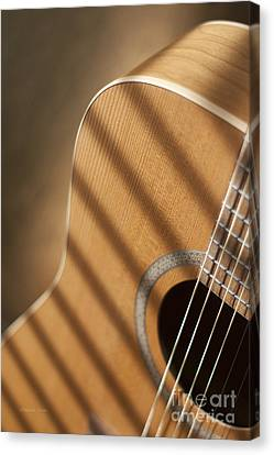 Guitar Variations 1 Canvas Print by Gordon Wood