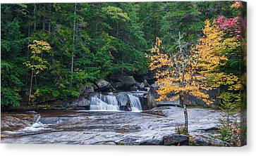 Gulf Hagas Brook Canvas Print by Guy Whiteley