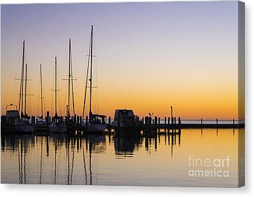 Gulf Of Mexico Sailboats At Sunrise Canvas Print by Andre Babiak
