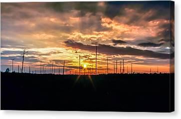 Gulf Shore Sunset Canvas Print