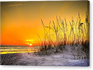 Sand Dunes Canvas Print - Gulf Sunset by Marvin Spates