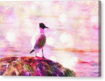Gull Scouts From Stone Canvas Print