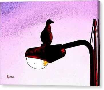 Gullable Sentry Canvas Print by Sadie Reneau
